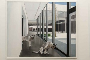 Dirk Balke Wölfe im Museum Öl auf Leinwand 80x100cm